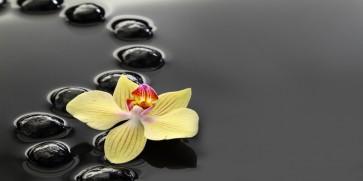 Omar Olavi - Yellow Orchids on Black Stones