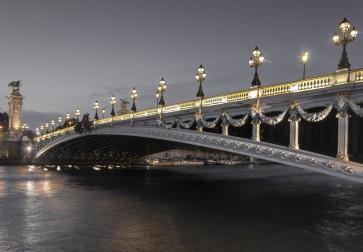 Tim Arrisson - Alexander III Bridge, France