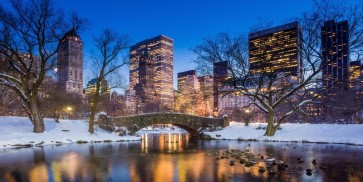 Ben McFrey - Gapstow Bridge in Winter, Central Park