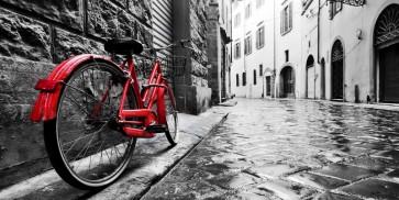 Doris Berry - Red Vintage Bike on Cobblestone