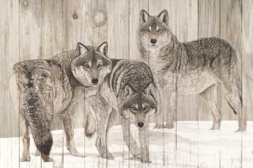 Jacquie Vaux - Three Grey Wolves On Wood