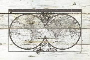 Carol Robinson - World Map Hemispheres