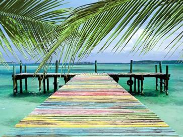 Steve Vaughn - Rainbow Dock