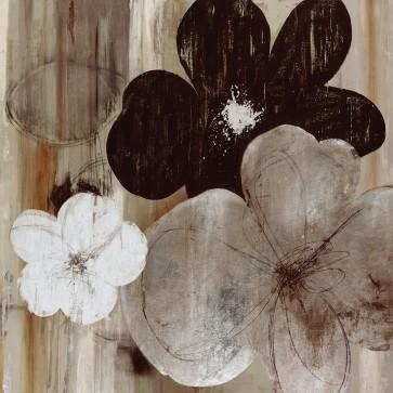 Allison Pearce - Carrara