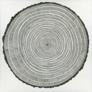 Sandrine Pellisier - Tree Theory