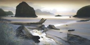 William Vanscoy - She Sleeps In The Sand-Ovsz