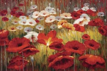Lucas Santini - Meadow Poppies II