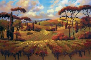 Janet Vanderhoof - Evening Vineyard