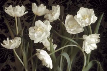 Donna Geissler - Bountiful Tulips