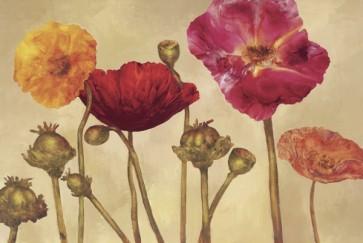 Elise Remender - Spring Perfection I
