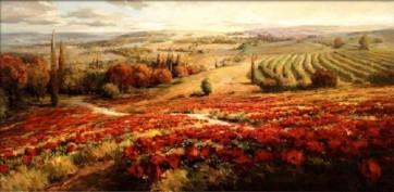 Roberto Lombardi - Red Poppy Panorama -Ovs