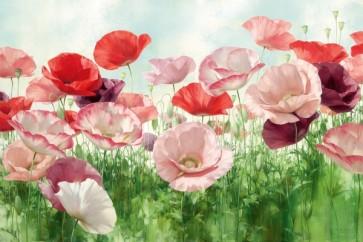 Igor Levashov - Poppies Pleasure