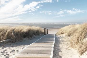 Beach - Pathway