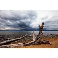 Beach Landscape Storm Sky II