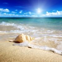 Ann Gavril - Tropical Beach In Thailand III