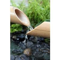 Omar Olavie - Water Source