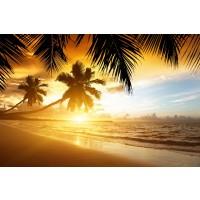 Ann Gavril - Tropical Beach Sunset In Thailand