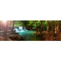 Renée Pehr - Forest Waterfall II