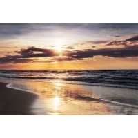Ann Gavril - Tropical Beach - Wish You Were Here