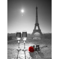 Assaf Frank - Champagne glasses with red rose next to the Eiffel tower