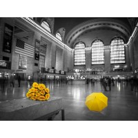 Assaf Frank - Bunch of yellow roses and umbrella in Grand Central Terminal, New York