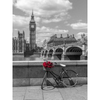 Assaf Frank - Bunch of Roses on a bicycle agaisnt Westminster Abby, London, UK
