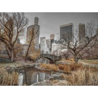 Assaf Frank - Central park and Manhattan skyline, New York