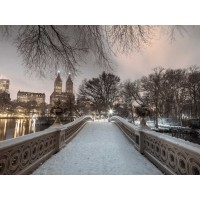 Assaf Frank - Central park with Manhattan skyline, New York