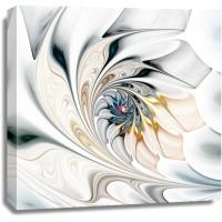 Alison Walton - Abstract White Flower