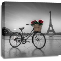 Assaf Frank - A bicycle with a basket of flowers with the Eiffel tower in the background