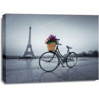 Assaf Frank - Bicycle with a basket of flowers next to the Eiffel tower, Paris, France
