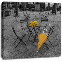 Assaf Frank - Bunch of roses and umbrella on table and chair at the park, New York