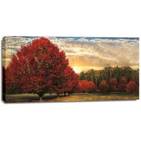 Celebrate Life Gallery - Crimson Trees