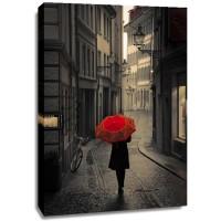 Stefano Corso - Red Rain