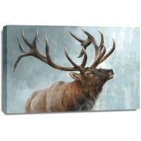 Dina Perejogina - Rising Bull Elk
