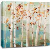 Allison Pearce - Fall Birch Trees