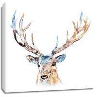 Edward Selkirk - Watercolour Reindeer
