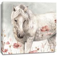 Lisa Audit - Wild Horses V