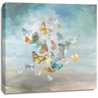 Danhui Nai - Beautiful Butterflies