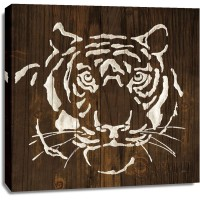 Chris Paschke - White Tiger on Dark Wood