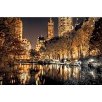 Assaf Frank - Central Park Glow