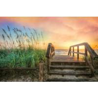 Celebrate Life Gallery - Walk Into Sunrise