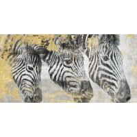 Dina Perejogina - Zebra