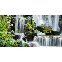 Stephen Yong - Tropical Water Fall