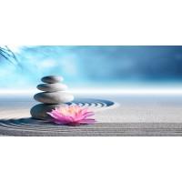 Omar Olavi - Pink Lily Stones On Sand