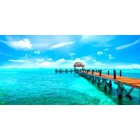Ann Gavril - Exotic Caribbean Island