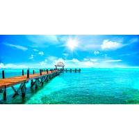 Ann Gavril - Exotic Caribbean Paradise
