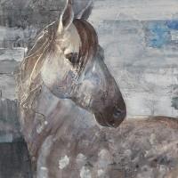 Albena Hristova - Appaloosa