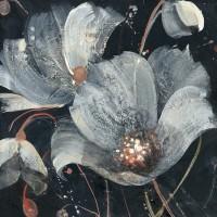 Albena Hristova - Translucent Poppies