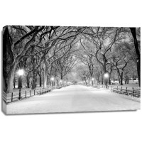 Jameela Danai - Central Park, NY Covered In Snow